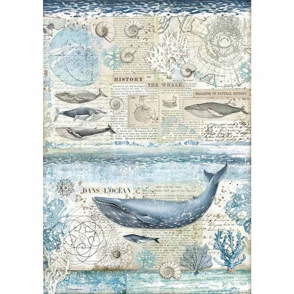 Stamperia Ριζόχαρτο για Decoupage - History Of The Whale - A3