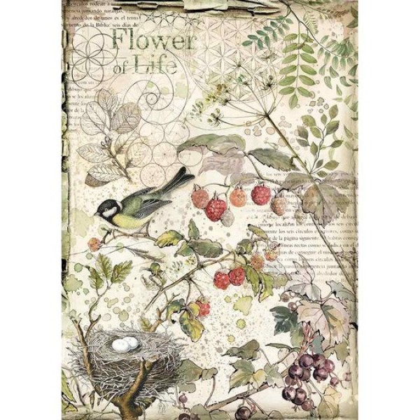Stamperia Ριζόχαρτο για Decoupage - Forest flowers and fruits - A4