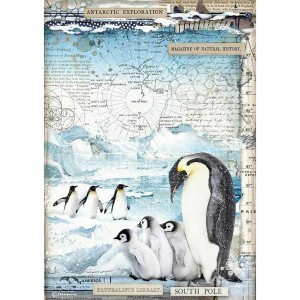 Stamperia Ριζόχαρτο για Decoupage - Penguins - A4